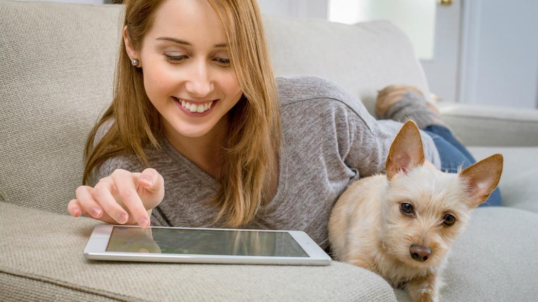 علاقه انسان به نگهداری از حیوانات خانگی از کجا می آید؟