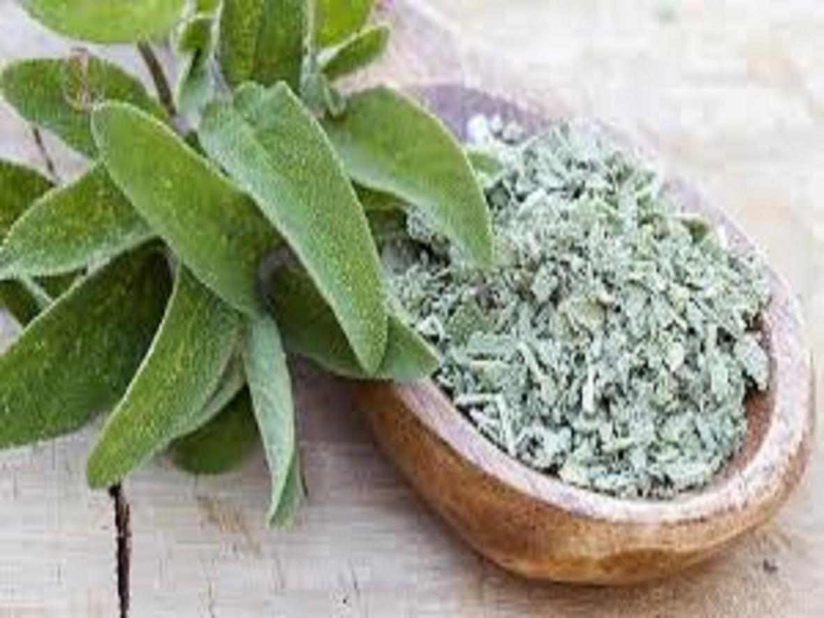 گیاهی که زایمان طبیعی را راحت تر می نماید