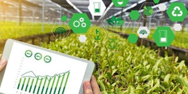 شرکت های دانش بنیان احتیاج کشور به محصولات زیستی و کشاورزی را برطرف می نمایند